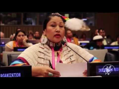 UN Declaration on the Rights of Indigenous Peoples