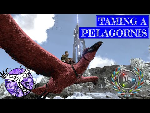 THE PINK PELAGORNIS | Arktic Hardcore Survival Episode 27 | ARK Survival Evolved Mobile