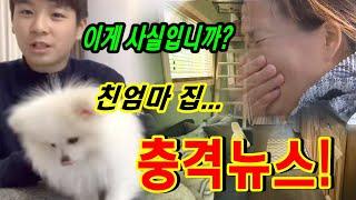 정동원은 친모의 서울 집을 보자 눈물을 펑펑 흘렸다. …