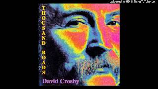 David Crosby ‎-- Thousand Roads - Too young to die