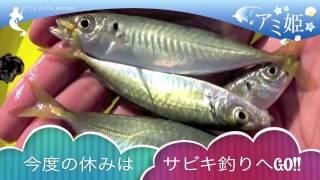 【アミ姫】ピク!ピク!楽しい!! サビキ釣り thumbnail
