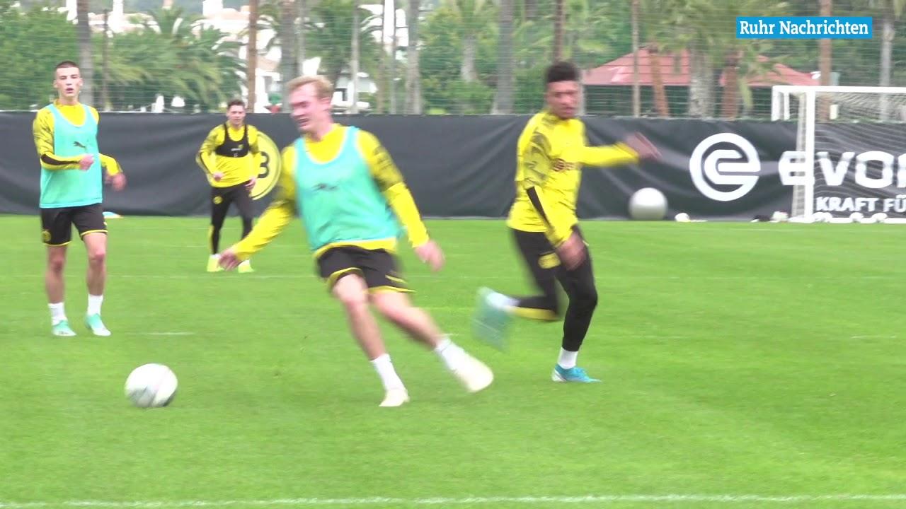 Haaland und Reus sind zurück im BVB-Training