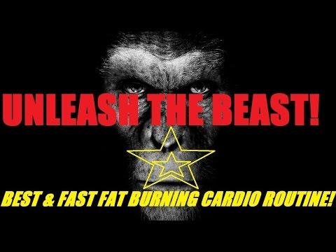★ BEST & FAST ★ Fat Burning Cardio Routine! |Gorilla Fitness|