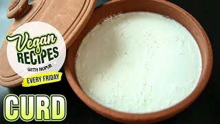 Vegan Curd Recipe - How To Make Curd Without Curd - Vegan Series By Nupur