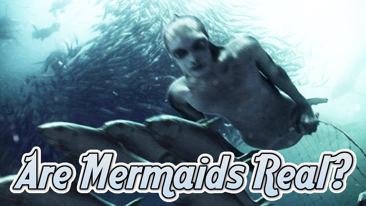 Are Mermaids Real Discovery Channel Thinks So Youtube