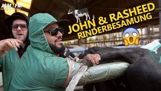Rinderbesamung 😱💉 John & Rasheed ⚡️ JAM FM