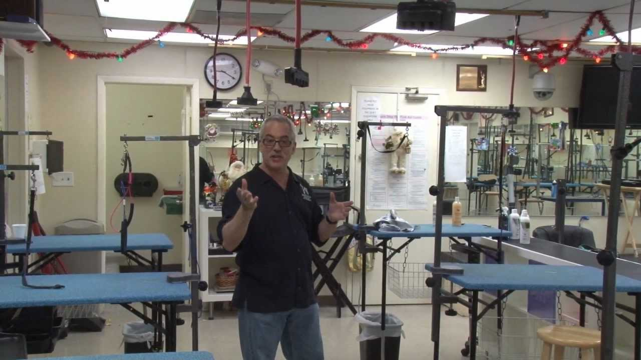 Facility Tour Merryfield School Of Pet Grooming With Gregg Docktor