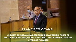 VOX pide reducir la presión fiscal al sector agrario, pesquero y ganadero