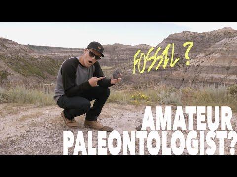 Amateur Paleontologist?