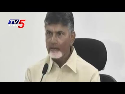 AP CM Chandrababu Naidu Press Meet At Delhi | Telugu News | TV5 News