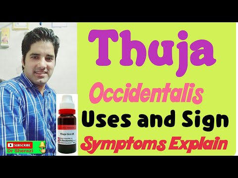 Homeopathic medicine thuja occidentalis uses and sign
