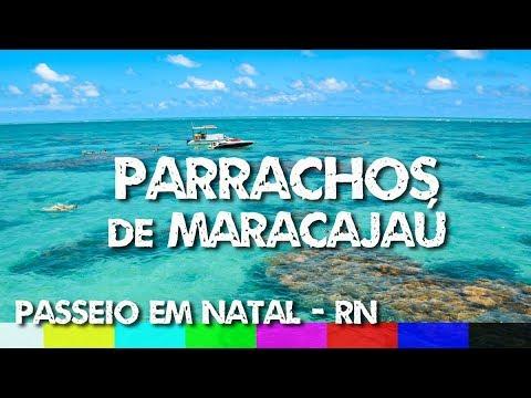 O que fazer em Natal RN: Passeio até os Parrachos de Maracajaú