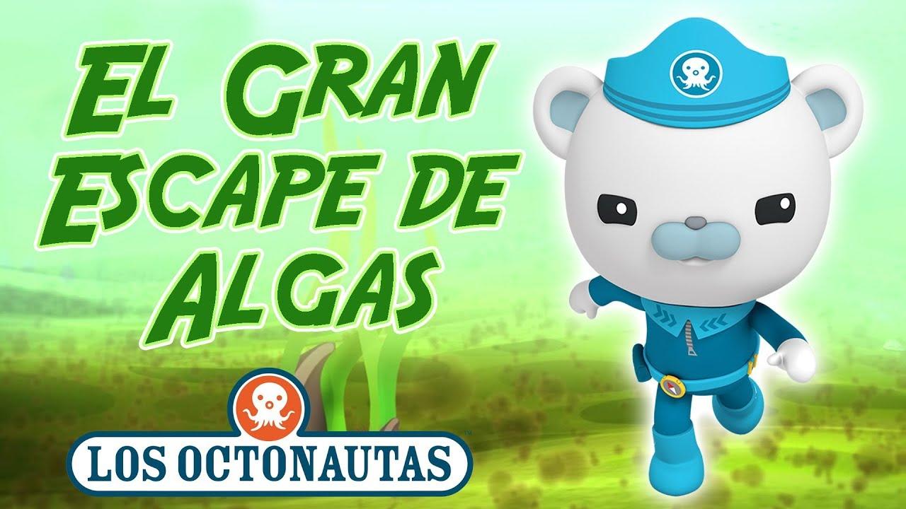 Los Octonautas Oficial en Español - El Gran Escape de Algas | Episodio 25