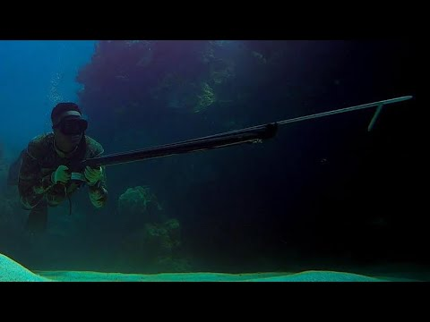 Spearfishing For Bar Jack