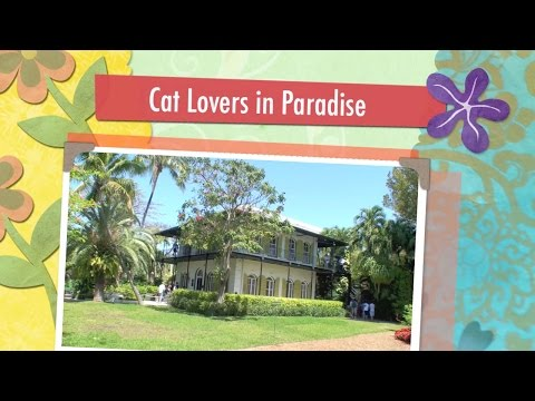Hemingway House: Cat Lovers in Paradise
