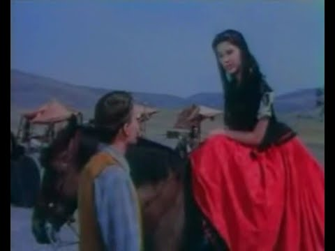 The Young Land 1959 Yvonne Craig,Patrick Wayne,Dennis Hopper