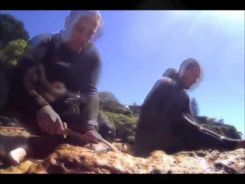 Balmoral Spearfishing - Jonno and Seb