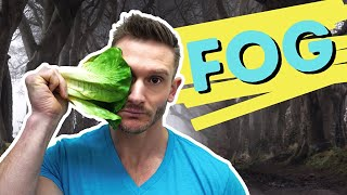 How I Get Rİd of Brain Fog