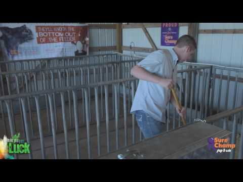Show Pig: How to Build a Proper Pig Pen