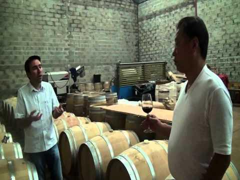 醸造所にてシャトー・オーナーとワイン談義