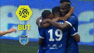 But Adama NIANE (53') / OGC Nice - ESTAC Troyes (1-2)  / 2017-18