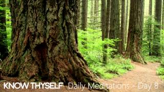"""Know Thyself Daily Meditations  - Day 8 'Say Yes to Yourself & Your Dreams"""""""