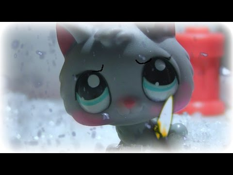 LPS: The Little Match Girl (Christmas special 2015)