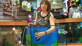 Как собрать аквариум?(г. Новокузнецк. СТК 10, программа