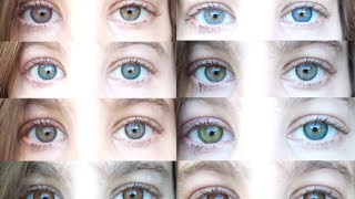 Color Contacts: All 12 Freshlooks Color Contact Lenses(Video review of the 12 Colored Contact lenses by Freshlooks. HD quality, and everything you need to know before buying a pair of lenses! Read below for more ..., 2015-07-08T23:06:42.000Z)