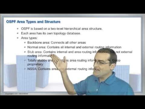 OSPF Special Area Types