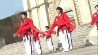 Poomsae Taekwon Dance Taegeuk 1 Jang.mpg