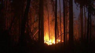 В Сибири и на Дальнем Востоке за сутки удалось потушить 67 крупных пожаров.