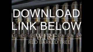 Wire - Red Barked Tree. FULL ALBUM. Fast download!