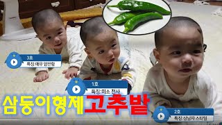 ♥삼둥이일상♥ 죄충우돌 정신없는 육아생활 남자3명 ㄷㄷ…