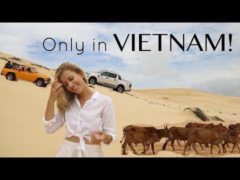 48 hours in Mui Ne, Vietnam | Travel Vlog