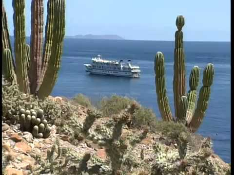 Baja, The Sea of Cortez: Burt Wolf Travels & Traditions (#103)