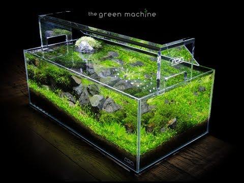 Aquascaping Videos The Green Machine