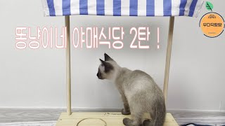 똥냥이네 야매식당 2탄!