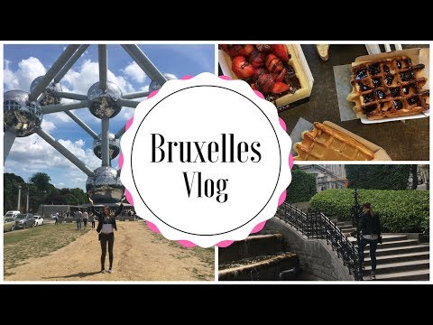 Bruxelles Vlog || Visite et dégustation ..