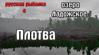Русская рыбалка 4 рр4 rf4 озеро Ладожское Плотва