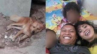 Download Video Kondisi Anjing Milik Korban Pembunuhan di Bekasi Tak Mau Makan dan Menangis MP3 3GP MP4