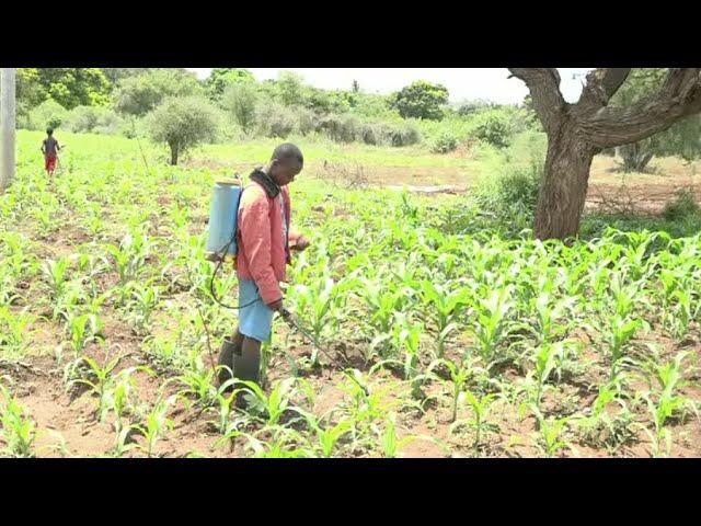 Sh 3.3B irrigation project launched in Taita Taveta