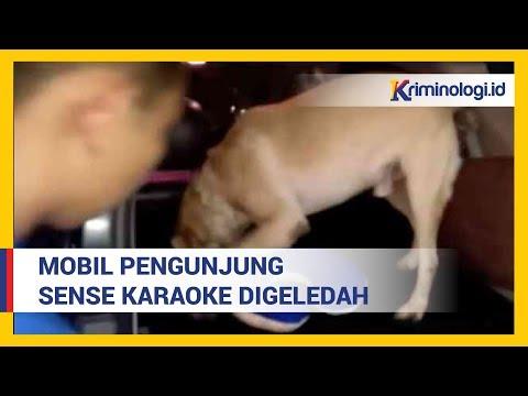 Video BNN Geledah Mobil Pengunjung Sense Karaoke saat Penggerebekan