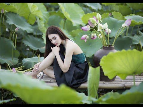 Tuyển tập 25 ca khúc nhạc Trữ Tình Việt Nam