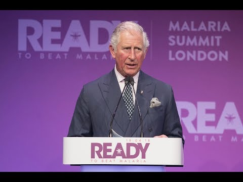 The Prince of Wales makes the keynote speech at #MalariaNoMore