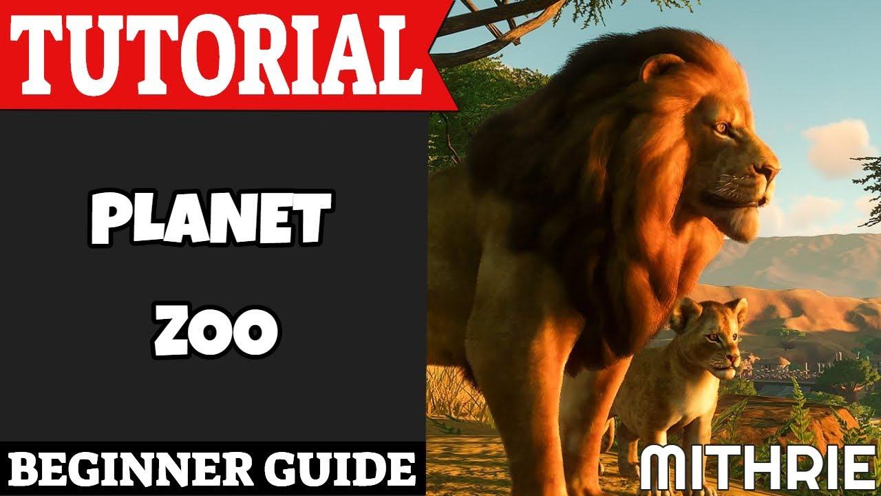 Planet Zoo Tutorial Guide (Beginner)