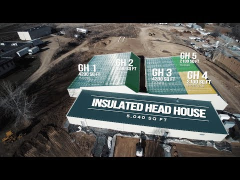 22k Sq. Ft. Sealed Cannabis Greenhouse Reveal in Boulder, Colorado!