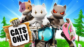 The *UNDERCOVER* CAT Challenge in Fortnite!