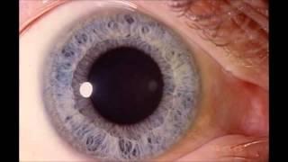 видео Наркотическое средство спайс: состав и есть ли привыкание к нему