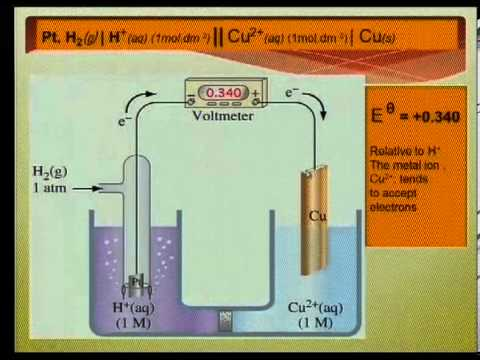 Matric revision: Physical Science: Electrochemical Reactions (1/2)